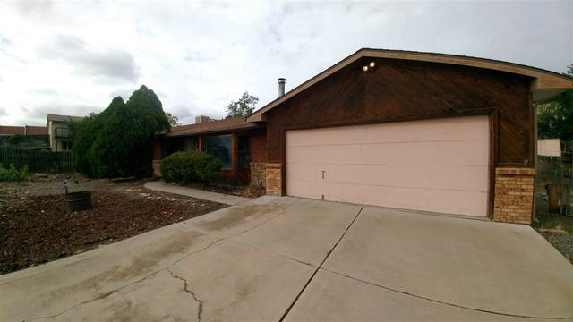 195 Rincon Drive, Grand Junction, CO 81503 (MLS #20204533) :: The Christi Reece Group