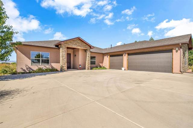 1822 M 3/4 Road, Fruita, CO 81521 (MLS #20204550) :: The Christi Reece Group