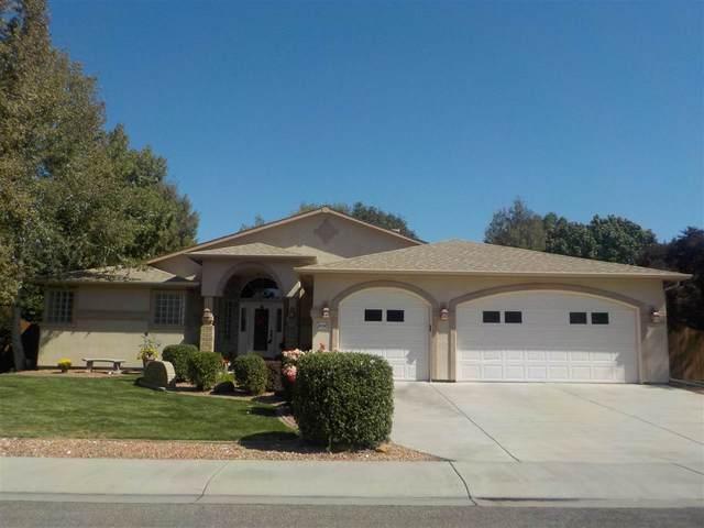 2530 Falls View Circle, Grand Junction, CO 81505 (MLS #20204555) :: CENTURY 21 CapRock Real Estate