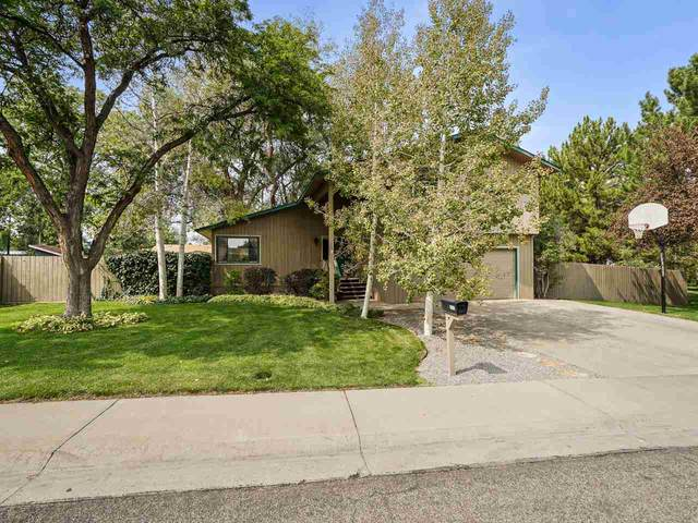 3313 Northridge Drive, Grand Junction, CO 81506 (MLS #20204639) :: The Christi Reece Group