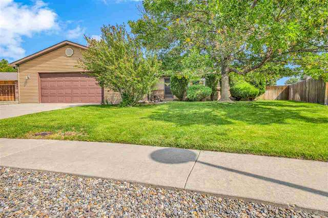 2956 Pheasant Run Circle, Grand Junction, CO 81506 (MLS #20204656) :: The Christi Reece Group