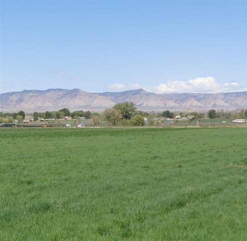 1328 and 1330 16 Road, Fruita, CO 81521 (MLS #20204657) :: The Kimbrough Team | RE/MAX 4000