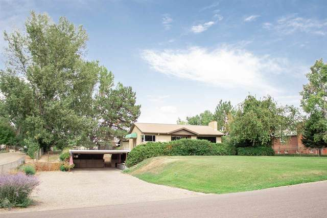 2520 G 3/8 Road, Grand Junction, CO 81505 (MLS #20204749) :: CENTURY 21 CapRock Real Estate