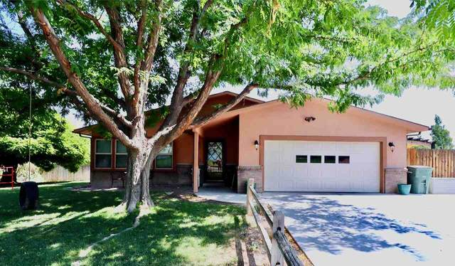 566 Rio Oso Lane, Grand Junction, CO 81507 (MLS #20204830) :: The Christi Reece Group