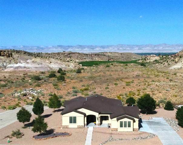 326 Red Point Road, Grand Junction, CO 81507 (MLS #20204873) :: The Danny Kuta Team