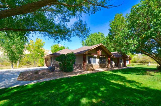 4356 Kannah Creek Road, Whitewater, CO 81527 (MLS #20204876) :: The Christi Reece Group