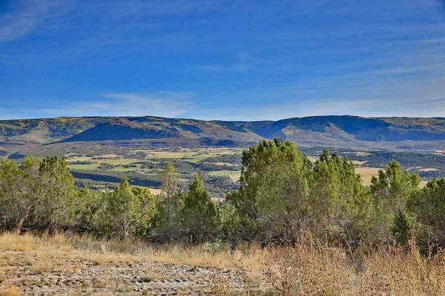 12705 55 Road, Collbran, CO 81624 (MLS #20204914) :: The Christi Reece Group