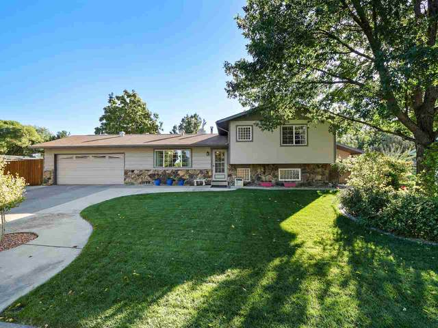 2695 Paradise Way, Grand Junction, CO 81506 (MLS #20205050) :: The Kimbrough Team | RE/MAX 4000