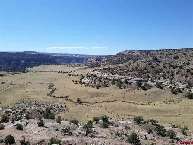 TBD W Highway I70, Mack, CO 81525 (MLS #20205052) :: The Kimbrough Team | RE/MAX 4000