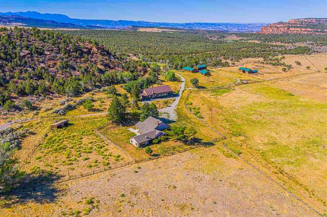 County Road 107 Mm 21.9, Glade Park, UT 81523 (MLS #20205057) :: The Kimbrough Team | RE/MAX 4000