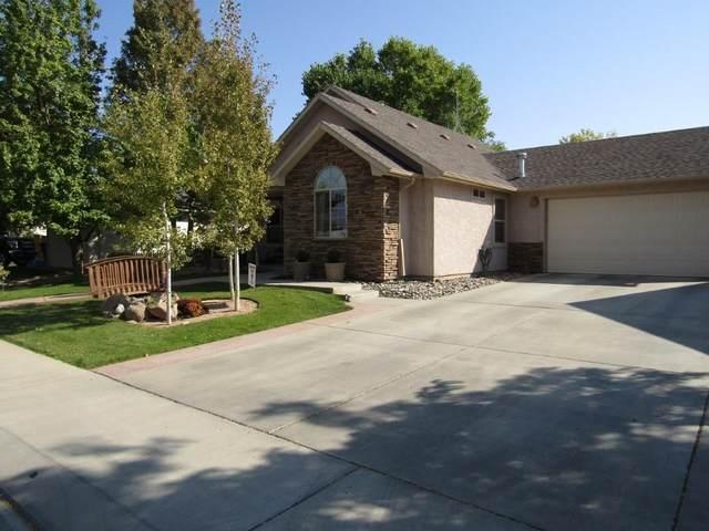 313 Talon Drive, Grand Junction, CO 81503 (MLS #20205073) :: The Danny Kuta Team