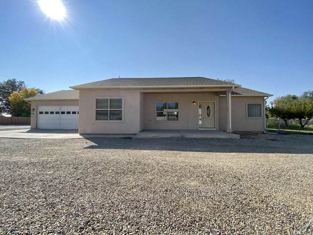 243 29 Road, Grand Junction, CO 81503 (MLS #20205084) :: The Kimbrough Team | RE/MAX 4000