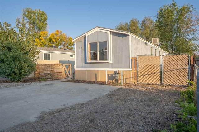528 Lonnie Way, Fruita, CO 81521 (MLS #20205104) :: The Kimbrough Team | RE/MAX 4000
