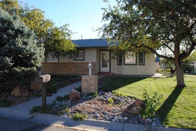 566 Sol Lane, Grand Junction, CO 81504 (MLS #20205188) :: The Christi Reece Group