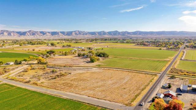 1010 21 1/2 Road, Grand Junction, CO 81505 (MLS #20205192) :: The Kimbrough Team | RE/MAX 4000