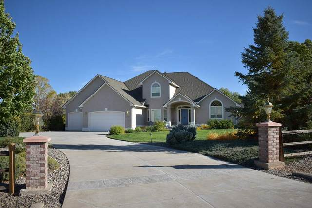 2027 W Liberty Court, Grand Junction, CO 81507 (MLS #20205206) :: The Christi Reece Group