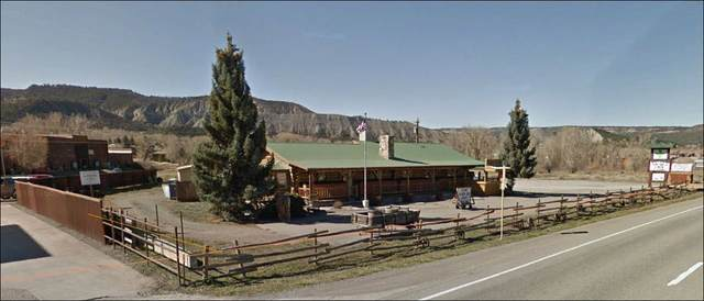 157 Highway 550, Ridgway, CO 81432 (MLS #20205224) :: The Kimbrough Team | RE/MAX 4000