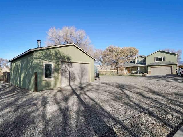 674 30 1/2 Road, Grand Junction, CO 81504 (MLS #20205242) :: The Danny Kuta Team