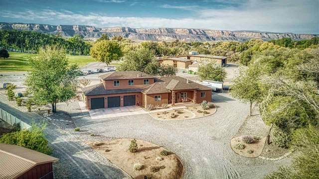 473 1/2 W Scenic Drive, Grand Junction, CO 81507 (MLS #20205332) :: The Kimbrough Team | RE/MAX 4000