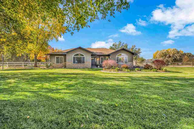 1721 K 3/4 Road, Fruita, CO 81521 (MLS #20205336) :: The Grand Junction Group with Keller Williams Colorado West LLC