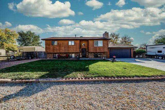 488 31 1/4 Road, Grand Junction, CO 81504 (MLS #20205342) :: The Christi Reece Group