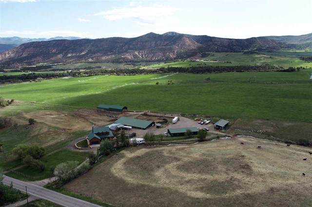 13612 59 Road, Collbran, CO 81624 (MLS #20205349) :: The Grand Junction Group with Keller Williams Colorado West LLC