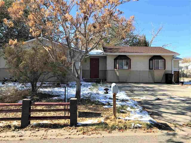 623 Jason Lane, Grand Junction, CO 81504 (MLS #20205393) :: CENTURY 21 CapRock Real Estate