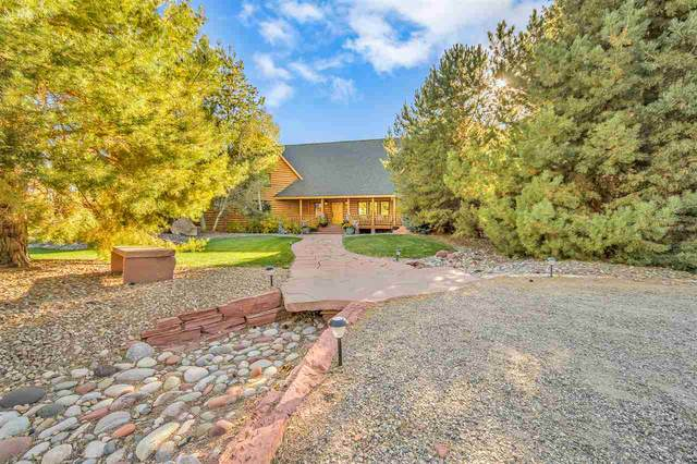 2441 Ruby Mesa Court, Grand Junction, CO 81505 (MLS #20205412) :: The Grand Junction Group with Keller Williams Colorado West LLC
