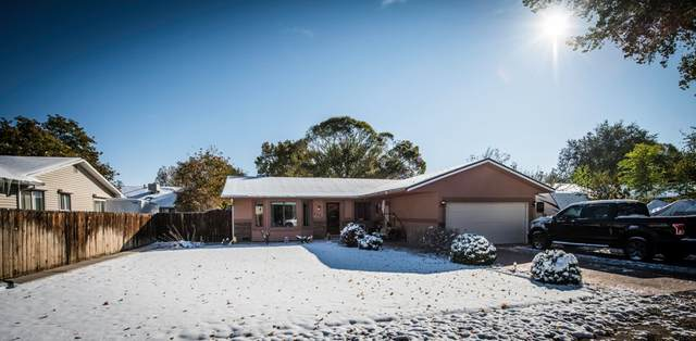 608 29 1/2 Road, Grand Junction, CO 81504 (MLS #20205414) :: The Kimbrough Team | RE/MAX 4000