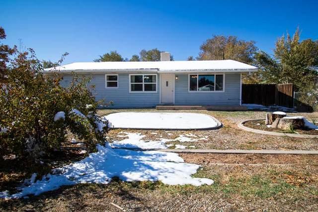 281 Cedar Street, Grand Junction, CO 81503 (MLS #20205445) :: The Christi Reece Group
