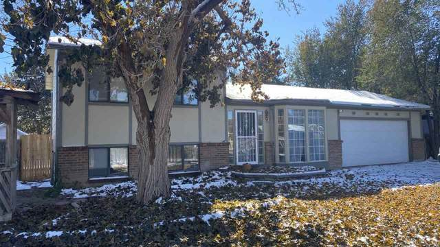 2883 B 1/2 Road, Grand Junction, CO 81503 (MLS #20205457) :: The Kimbrough Team | RE/MAX 4000