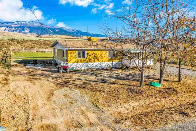 412 35 Road, Palisade, CO 81526 (MLS #20205465) :: The Grand Junction Group with Keller Williams Colorado West LLC