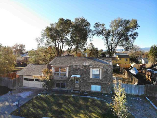 3005 Hill Court, Grand Junction, CO 81504 (MLS #20205473) :: The Christi Reece Group
