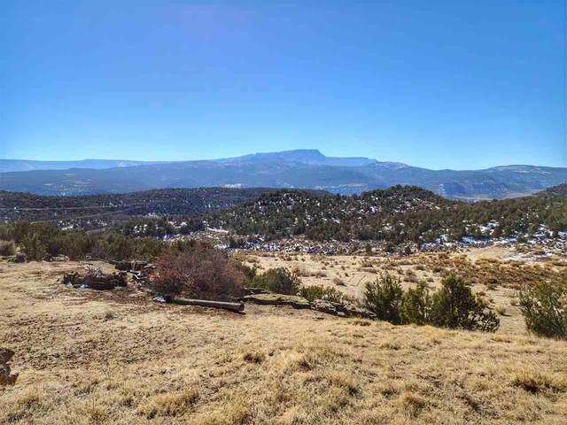 4451 Horse Canyon Road, De Beque, CO 81630 (MLS #20205476) :: The Grand Junction Group with Keller Williams Colorado West LLC