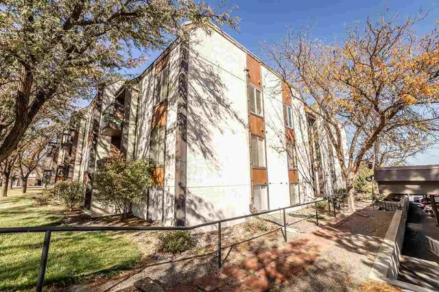 3146 Lakeside Drive #206, Grand Junction, CO 81506 (MLS #20205495) :: Western Slope Real Estate