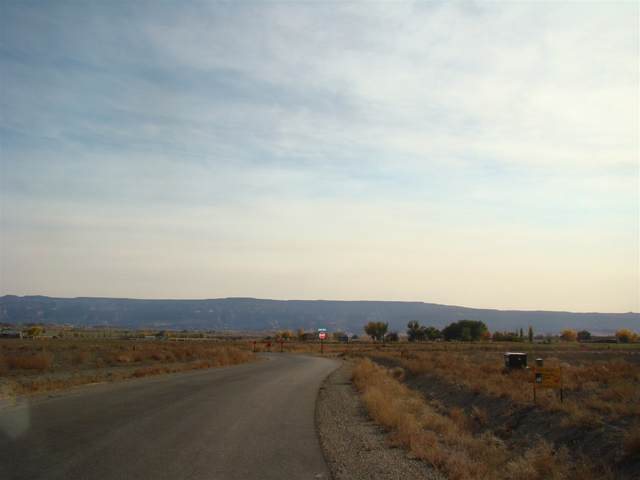 1589 Cattle Drive, Loma, CO 81524 (MLS #20205510) :: The Christi Reece Group