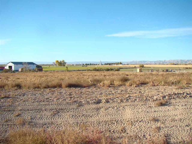 1591 Cattle Drive, Loma, CO 81524 (MLS #20205511) :: The Danny Kuta Team