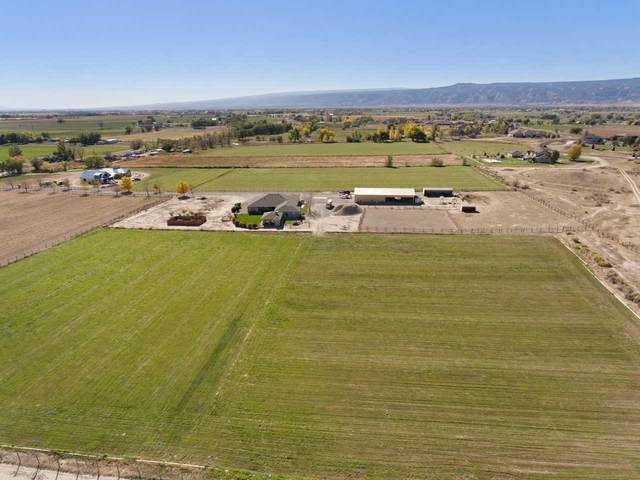 1421 19 Road, Fruita, CO 81521 (MLS #20205682) :: The Kimbrough Team | RE/MAX 4000