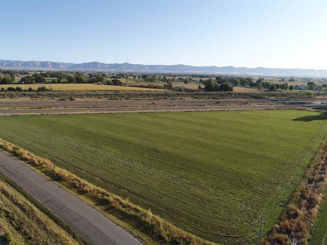 TBD 19 Road, Fruita, CO 81521 (MLS #20205692) :: The Christi Reece Group