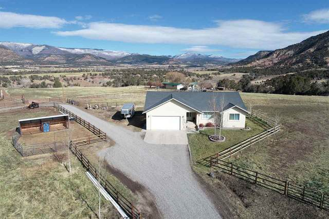 15734 Red Mountain Lane, Collbran, CO 81624 (MLS #20205700) :: The Kimbrough Team | RE/MAX 4000