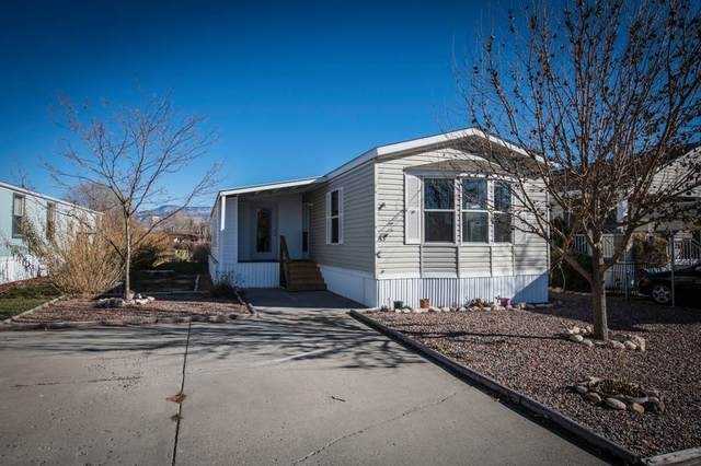 3251 E Road #53, Clifton, CO 81520 (MLS #20205735) :: The Kimbrough Team   RE/MAX 4000