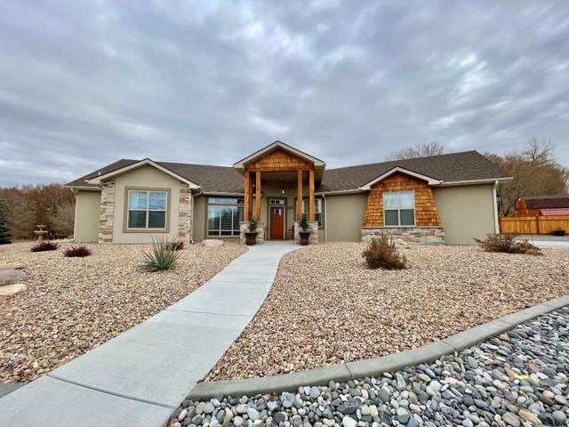 1775 Trappers Court, Delta, CO 81416 (MLS #20205740) :: The Kimbrough Team | RE/MAX 4000