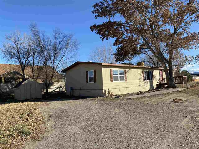 1017 Park Street, Fruita, CO 81521 (MLS #20205836) :: The Kimbrough Team | RE/MAX 4000