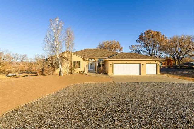 2642 H Road, Grand Junction, CO 81506 (MLS #20205883) :: The Christi Reece Group
