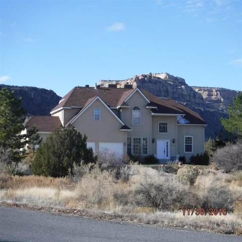 295 Chinle Court, Grand Junction, CO 81507 (MLS #20205893) :: The Christi Reece Group