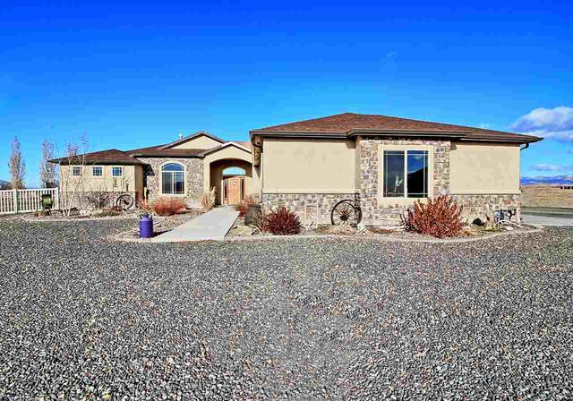 1173 Toscano Road, Fruita, CO 81521 (MLS #20205943) :: Lifestyle Living Real Estate