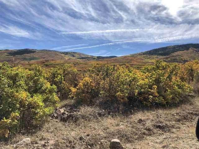 53027 Bull Basin Road, Mesa, CO 81643 (MLS #20205958) :: The Kimbrough Team   RE/MAX 4000
