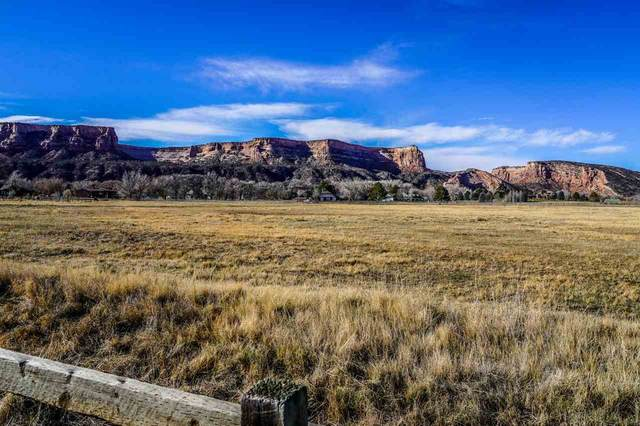 629 20 Road, Grand Junction, CO 81507 (MLS #20205959) :: The Kimbrough Team | RE/MAX 4000
