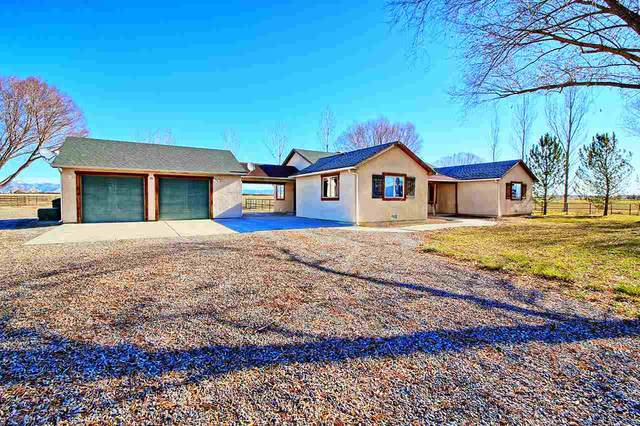 1526 14 1/2 Road, Loma, CO 81524 (MLS #20205969) :: The Danny Kuta Team