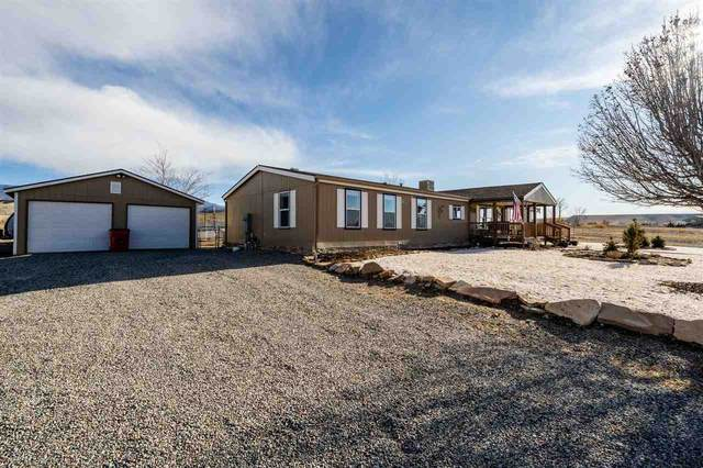 5300 Grand Mesa View Drive, Whitewater, CO 81527 (MLS #20205986) :: The Danny Kuta Team